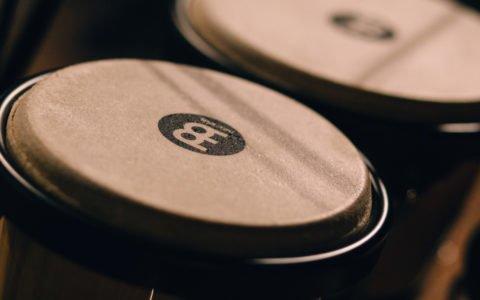 best bongo drums
